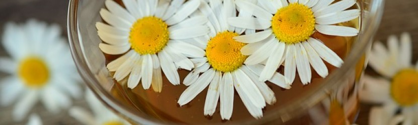 Chamomile infusion to aid a restful sleep and ease digestive problems